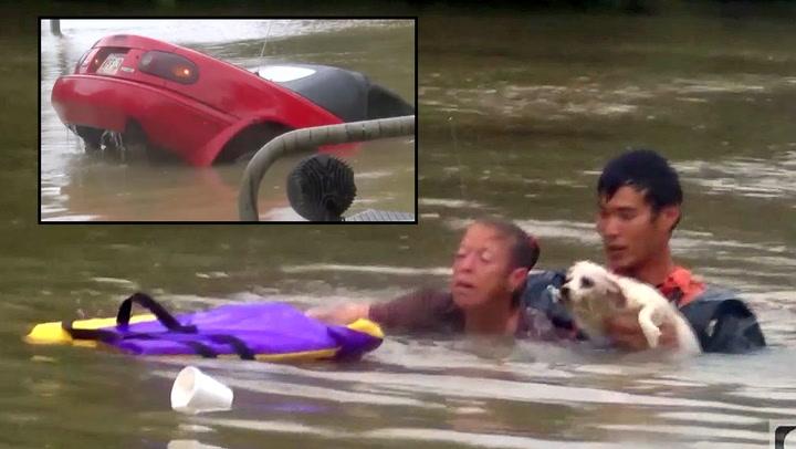 Reddet flomfast kvinne  - så dykket han etter hunden hennes