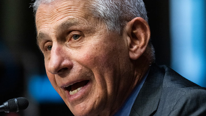 Watch live as Fauci testifies in Senate hearing on Covid response