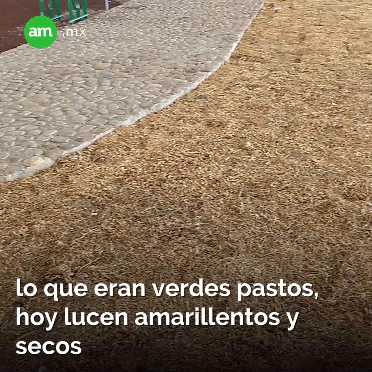 Nueva falla en el Distribuidor Benito Juárez