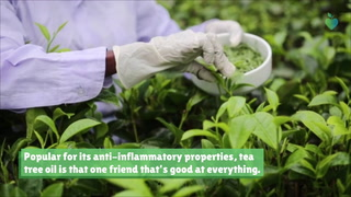 9 Best Natural Ingredients For Psoriasis