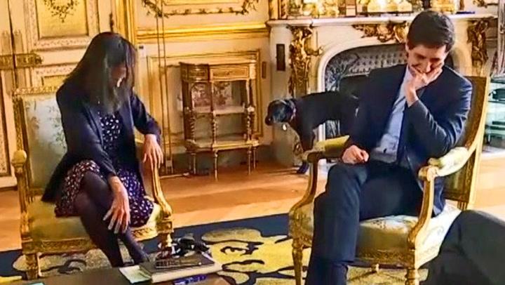 Presidentens ulydige hund Nemo tatt på fersken