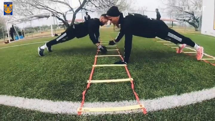 Tigres fitness training