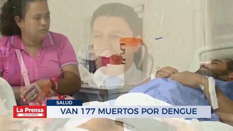 Van 177 muertos por dengue
