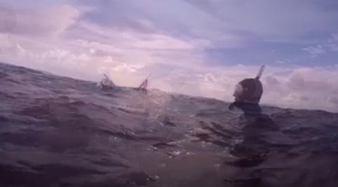 Filman su rescate tras quedar a la deriva rodeados por tiburones