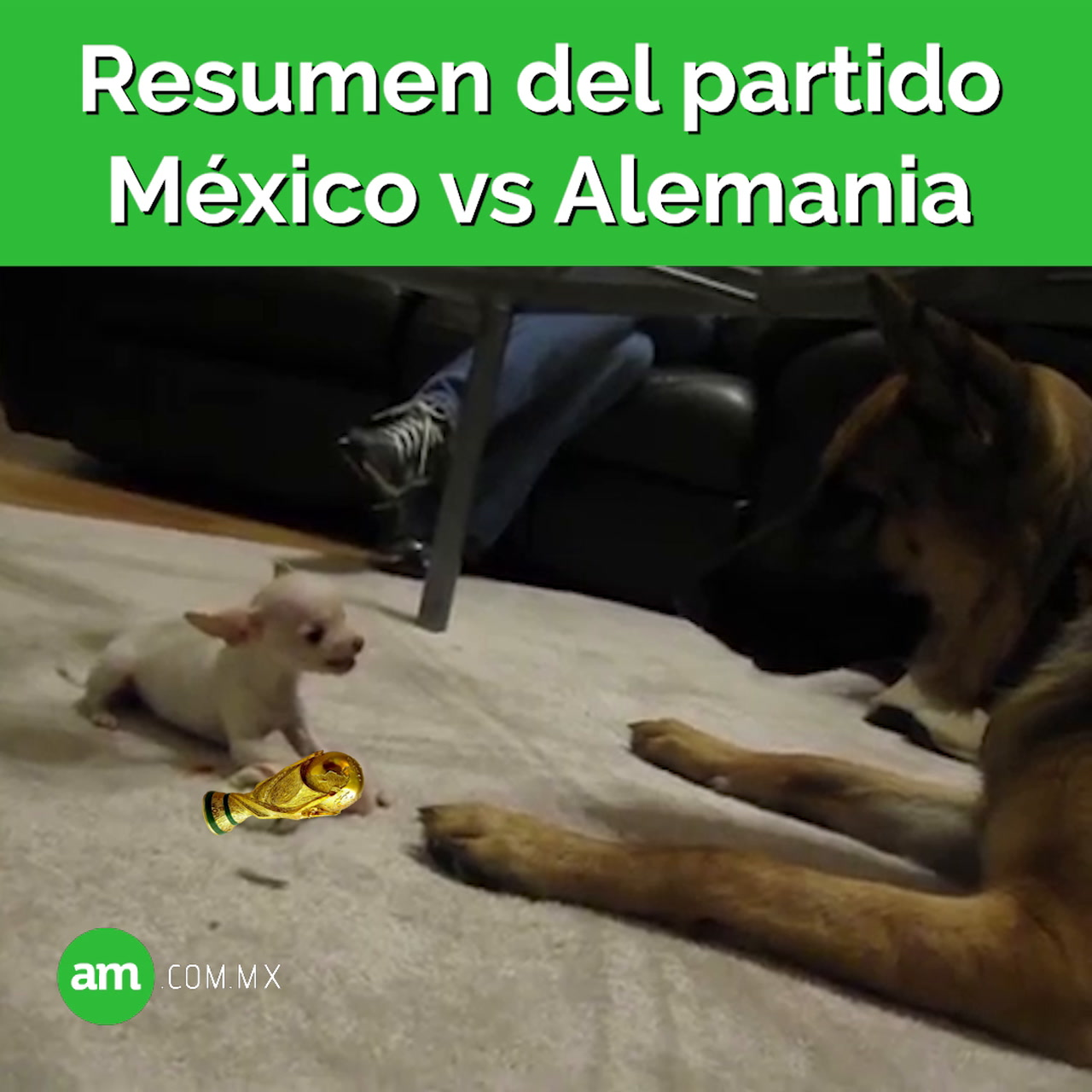 Video: Resumen del partido México vs Alemania