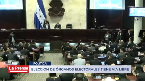 Elección de órganos electorales tiene vía libre
