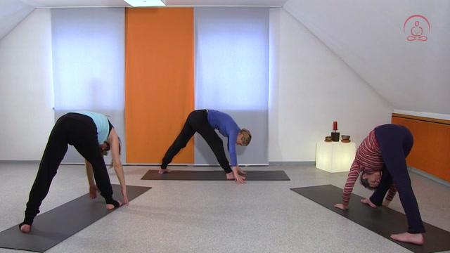 Yoga für den Rücken 1