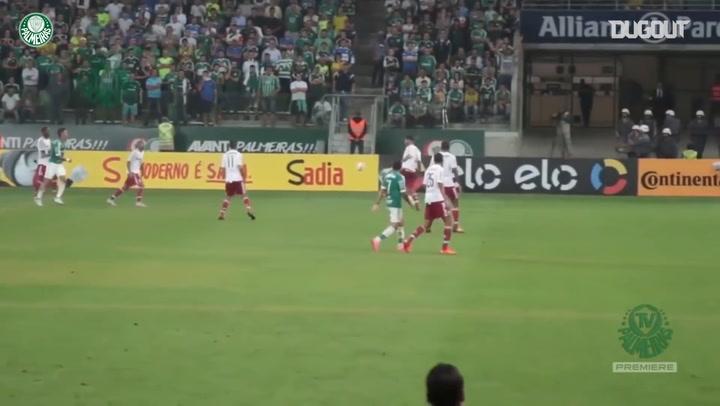 Gabriel Jesus' best Palmeiras moments