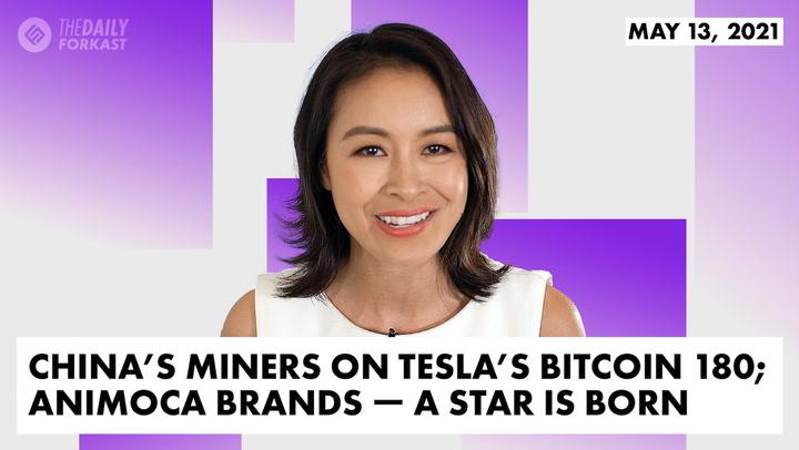 China's Miners on Tesla's Bitcoin 180; Animoca Brands: A Star is Born