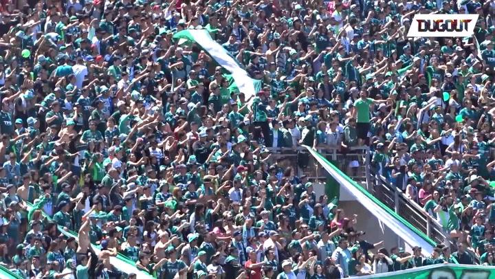 Incredible Fan Atmosphere!