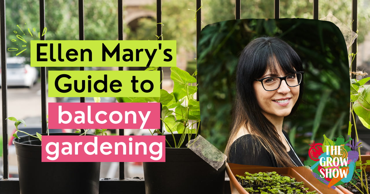 Ellen Mary's guide to balcony gardening