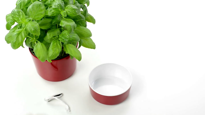 Preview image of Rosti Mepal Herb Pot video