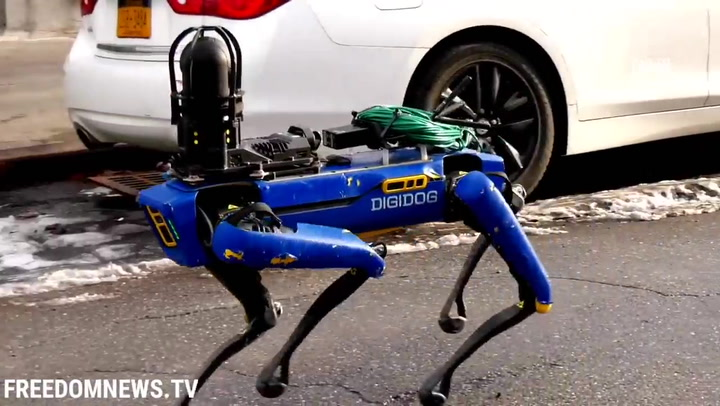 Spot es ahora un perro - robot policía en Nueva York