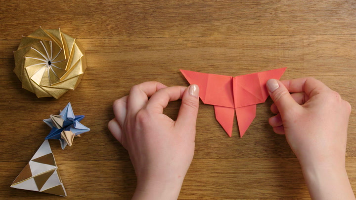 Best Origami Butterfly Ever — Instructions | Go Origami | 406x720