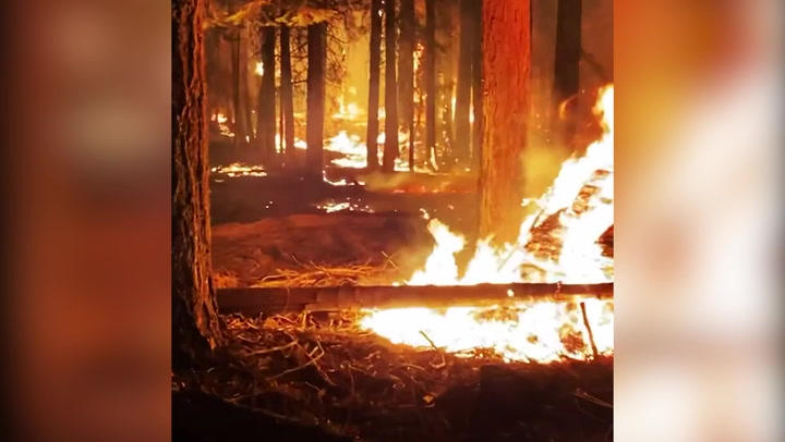 Terrifying video shows scene inside Caldor wildfire