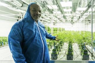 Mike Tyson le saca provecho a la marihuana en temporada de cuarentena