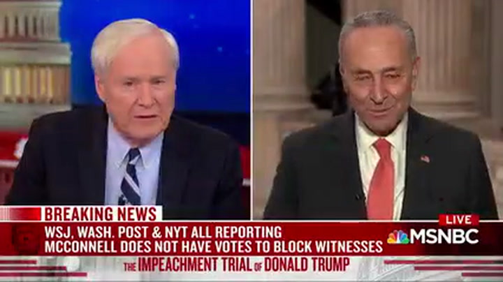 Schumer: Ten to Twelve Republicans 'In Play' on Voting for Witnesses, Documents