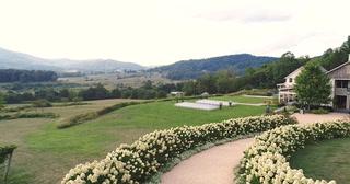 Rachel + Ben | North Garden, Virginia | Pippin Hill Farm & Vineyards