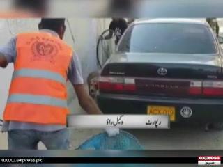 کراچی میں آوارہ کتوں کے خلاف رحم دلانہ مہم
