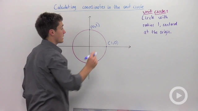 Calculating Coordinates in the Unit Circle