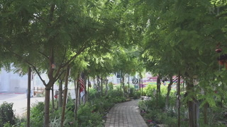 Healing Garden remains a gathering place