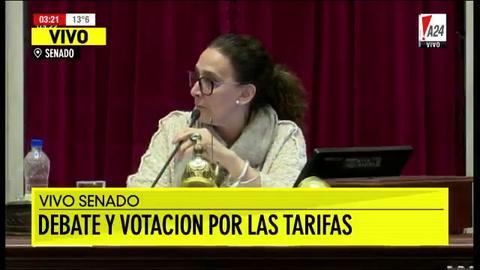 Cómo fue la sesión del Senado que aprobó el freno a los tarifazos