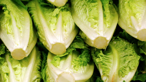 Romaine Lettuce  Now Safe to Eat