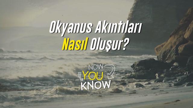 Now You Know - Okyanus akıntıları nasıl oluşur?