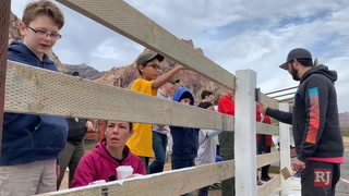Scouts BSA troop takes part in day of service – VIDEO