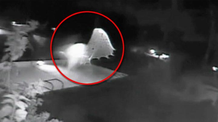 Her tar UFOen seg en dukkert i bassenget