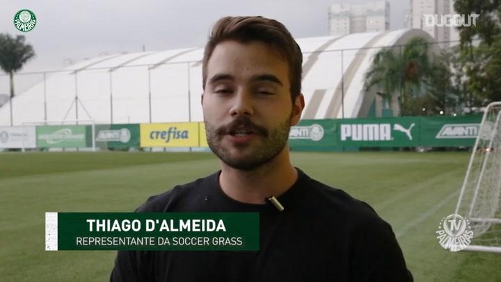Gramado artificial do Palmeiras passa por avaliação antes de nova temporada