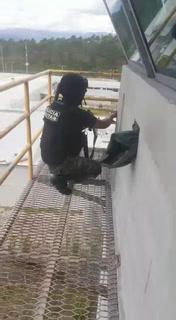 Lluvia de disparos en reyerta de cárcel La Tolva