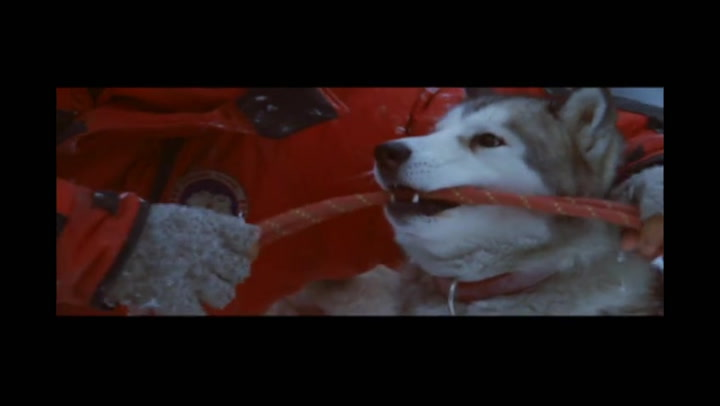 Eight Below - Extended Clip