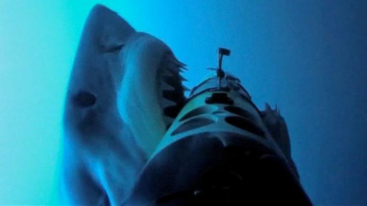 Se et haiangrep på ekstremt nært hold