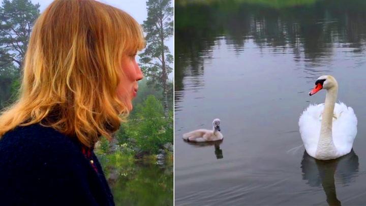 Svanens reaksjon overgikk Åsas villeste fantasi