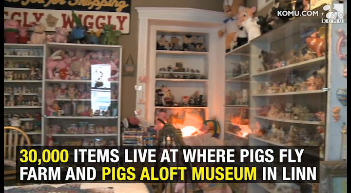 Pigs Aloft Museum houses 30,000 pig-themed items