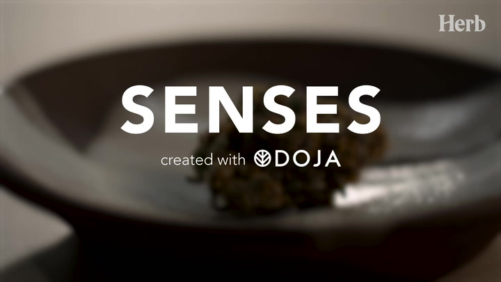DOJA | Senses - Episode 3. Touch