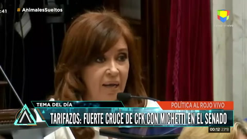 Fuerte cruce entre Cristina y Michetti en el Senado