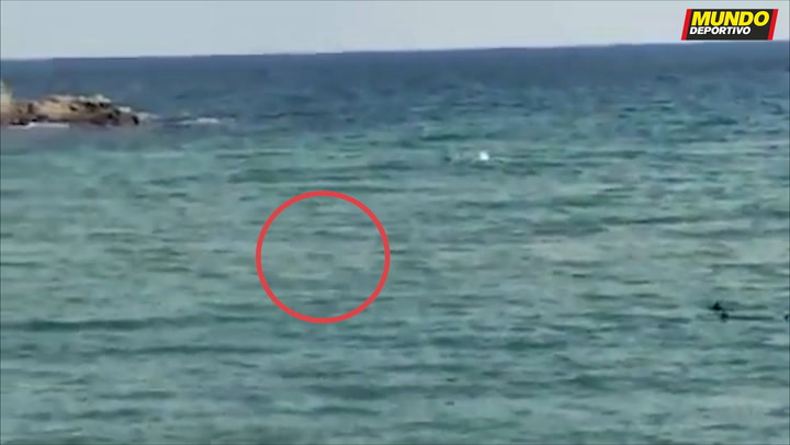 Terror en Girona cuando el nadador paralímpico Ariel Schrenck huye de dos tiburones