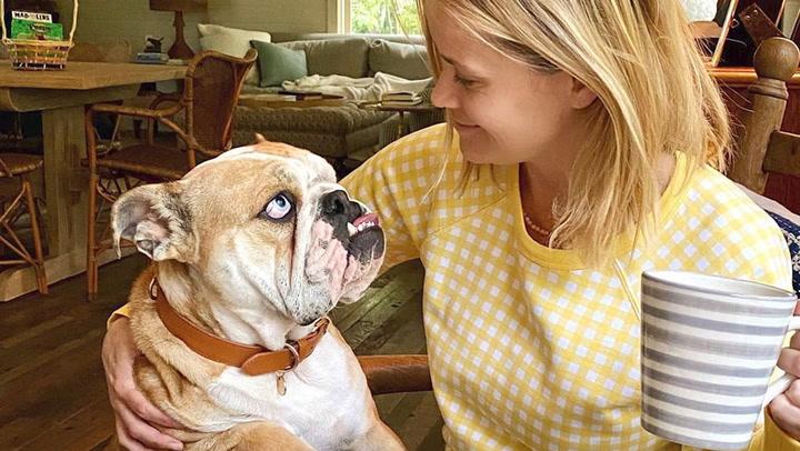Reese Witherspoon nos descubre a los golosos de su casa ¡y no son sus hijos!
