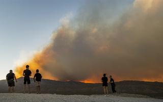 Illegal Campfires in Mount Charleston – Video