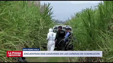 Encuentran dos cadáveres semi embolsados en las cañeras de Chamelecón