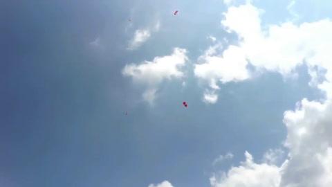 Graban el momento en que una paracaidista cae sobre un tendido eléctrico