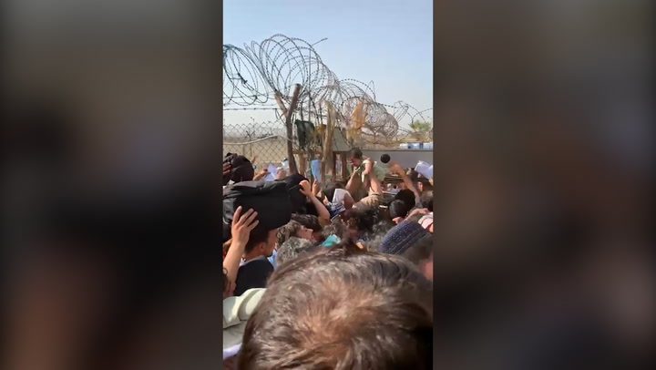 Terrified Afghan parents pass babies to troops over barbed wire fence