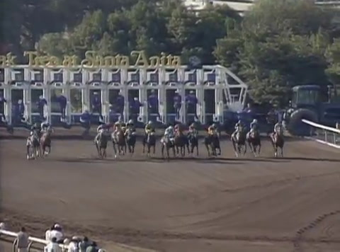 1993 Breeders Cup