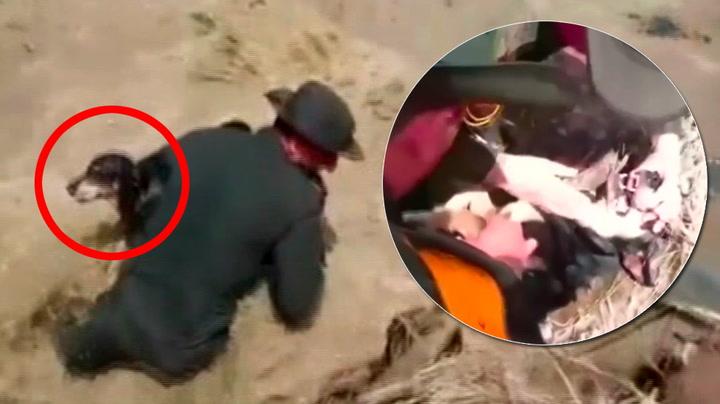 Munn- til hund-metoden redder redningshund