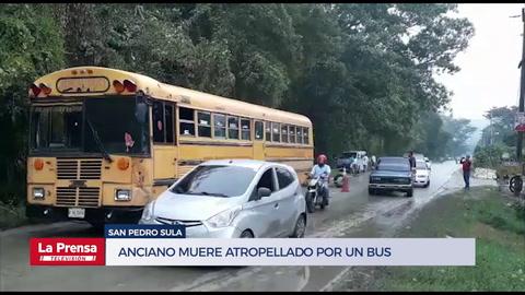 Anciano muere atropellado por un bus en San Pedro Sula