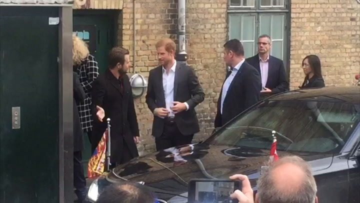 Prince Harry meets Denmark\'s Queen Margrethe II In Copenhagen