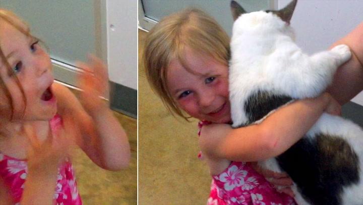Hun mistet katten sin for tre år siden – se det rørende gjensynet