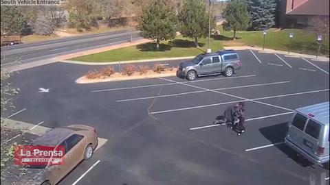Video viral: perro ataca salvajemente a una niña en una estacionamiento